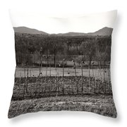 Sunflower Plot Throw Pillow