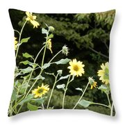 Sunflower Sea Of Happiness Throw Pillow