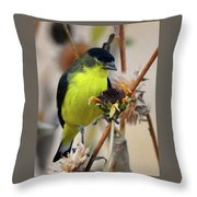 Sunflower Seed Snack Throw Pillow