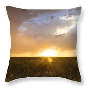 Sunflower Set Throw Pillow