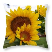 Sunflower Show Throw Pillow