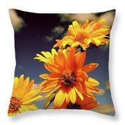 Sunflower Skies Throw Pillow