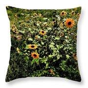 Sunflower Stalks Throw Pillow
