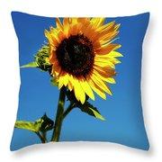 Sunflower Stand Alone Throw Pillow