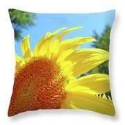 Sunflower Sunlit Art Print Canvas Sun Flowers Baslee Troutman Throw Pillow