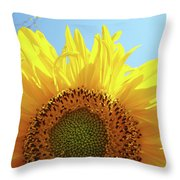 Sunflower Sunlit Sun Flowers Giclee Art Prints Baslee Troutman Throw Pillow