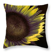 Sunflower Dawn Throw Pillow