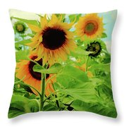 Sunflower Trio Throw Pillow
