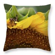 Sunflower With Grasshopper Throw Pillow