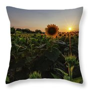 Sunflowers 1 Throw Pillow by Heather Kenward