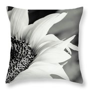 Sunflowers 16 Throw Pillow