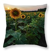 Sunflowers 2 Throw Pillow by Heather Kenward