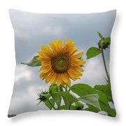 Sunflowers 2018-1 Throw Pillow