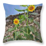 Sunflowers And A Stone Wall Throw Pillow