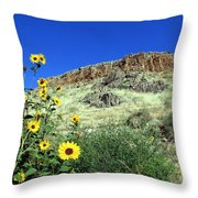 Sunflowers And Cliffs Throw Pillow