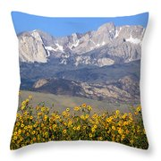 2a6742-sunflowers And Mount Humphreys  Throw Pillow
