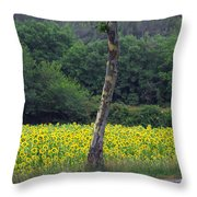 Sunflowers And Trees Growing Throw Pillow