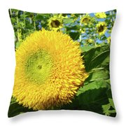 Sunflowers Art Prints Sun Flower Giclee Prints Baslee Troutman Throw Pillow