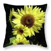 Sunflowers Art Yellow Sun Flowers Giclee Prints Baslee Troutman  Throw Pillow