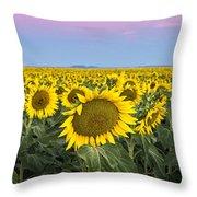 Sunflowers At Sunrise Throw Pillow