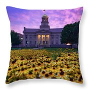 Sunflowers At The Old Capitol Throw Pillow