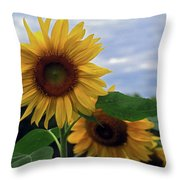 Sunflowers Close Up Throw Pillow