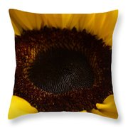 Sunflowers - Helianthus Throw Pillow
