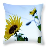 Sunflowers In Fall Throw Pillow