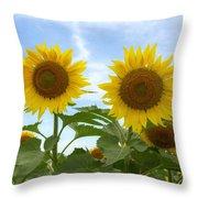 Sunflowers In Texas Summertime 1 Throw Pillow