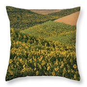 Sunflowers In The Palouse Throw Pillow