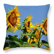 Sunflowers Looking East Throw Pillow