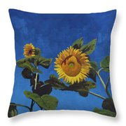 Sunflowers Throw Pillow by Marco Busoni