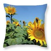 Sunflowers Throw Pillow
