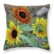 Sunflowers Of August Throw Pillow