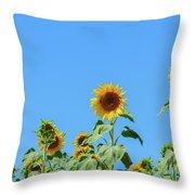 Sunflowers On Blue Throw Pillow
