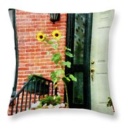 Sunflowers On Stoop Throw Pillow