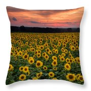 Sunflowers To The Sky Throw Pillow