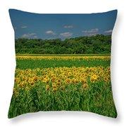 Sunflowers Weldon Spring Mo_dsc9830_16 Throw Pillow