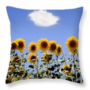 Sunflowers With A Cloud Throw Pillow