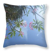 Sunglasses Required Throw Pillow