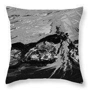 Sunken Treasure Throw Pillow