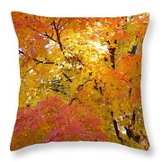 Sunkissed 2 Throw Pillow
