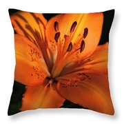 Sunkissed Lily Throw Pillow