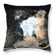 Sunlight And Clouds Reflected In The Birdbath Throw Pillow