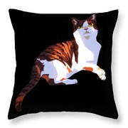 Sunlight And Shade Throw Pillow