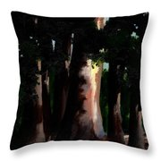 Sunlight And Shadows - Eucalyptus Majesties Throw Pillow