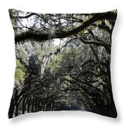 Sunlight And Shadows On Live Oaks Throw Pillow