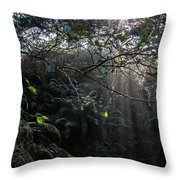 Sunlight Falling Into Glen With Bright Leaves, Vertical Throw Pillow
