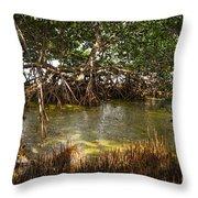 Sunlight In Mangrove Forest Throw Pillow