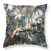 Sunlight On Mossy Tree Throw Pillow